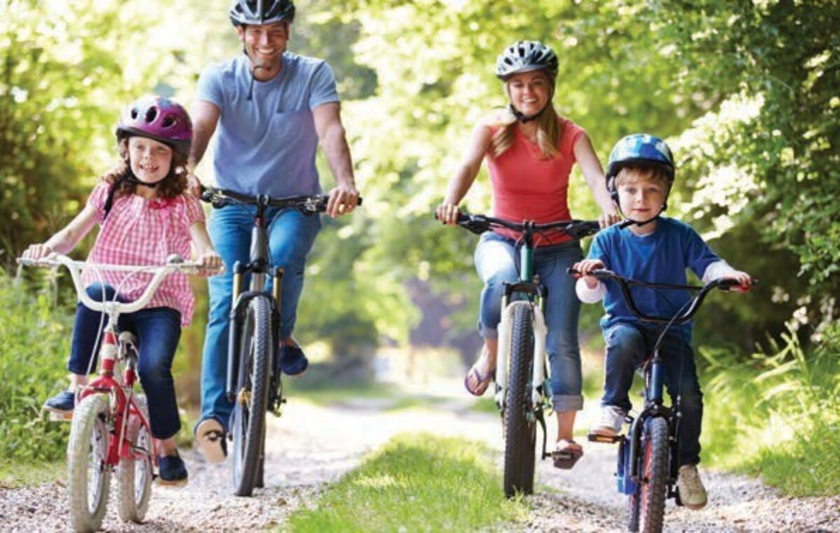 Bicycles: leap in sales from May to August
