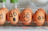 Mês do consumidor: emoções, atitudes e expectativas que ditam novos comportamentos