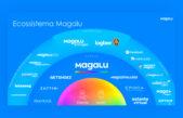 Magalu cresce 63% e lucra 81,5 milhões de reais no 1º tri
