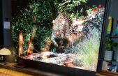 """Nova LG LED 136"""" traz experiência de cinema em residências de luxo"""